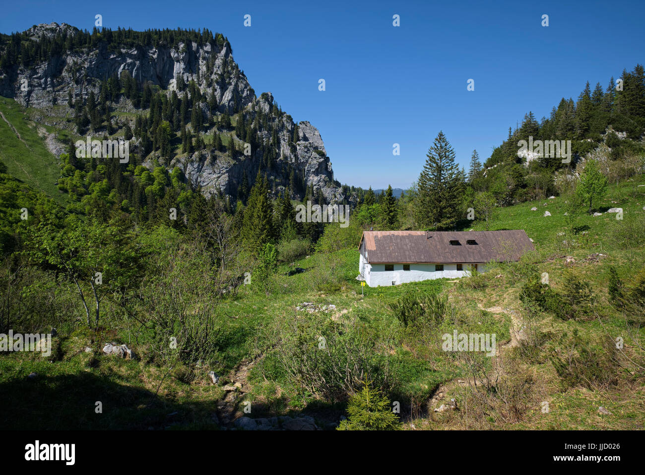 alp Probstalm in mountain region near Benediktenwand, Bavaria, Germany - Stock Image