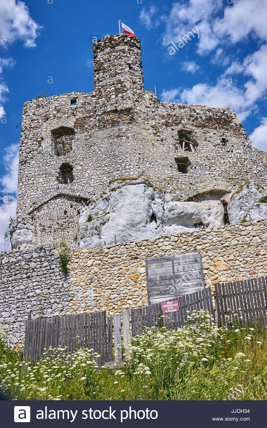 Ruins Of Medieval Castle In Mirow Poland