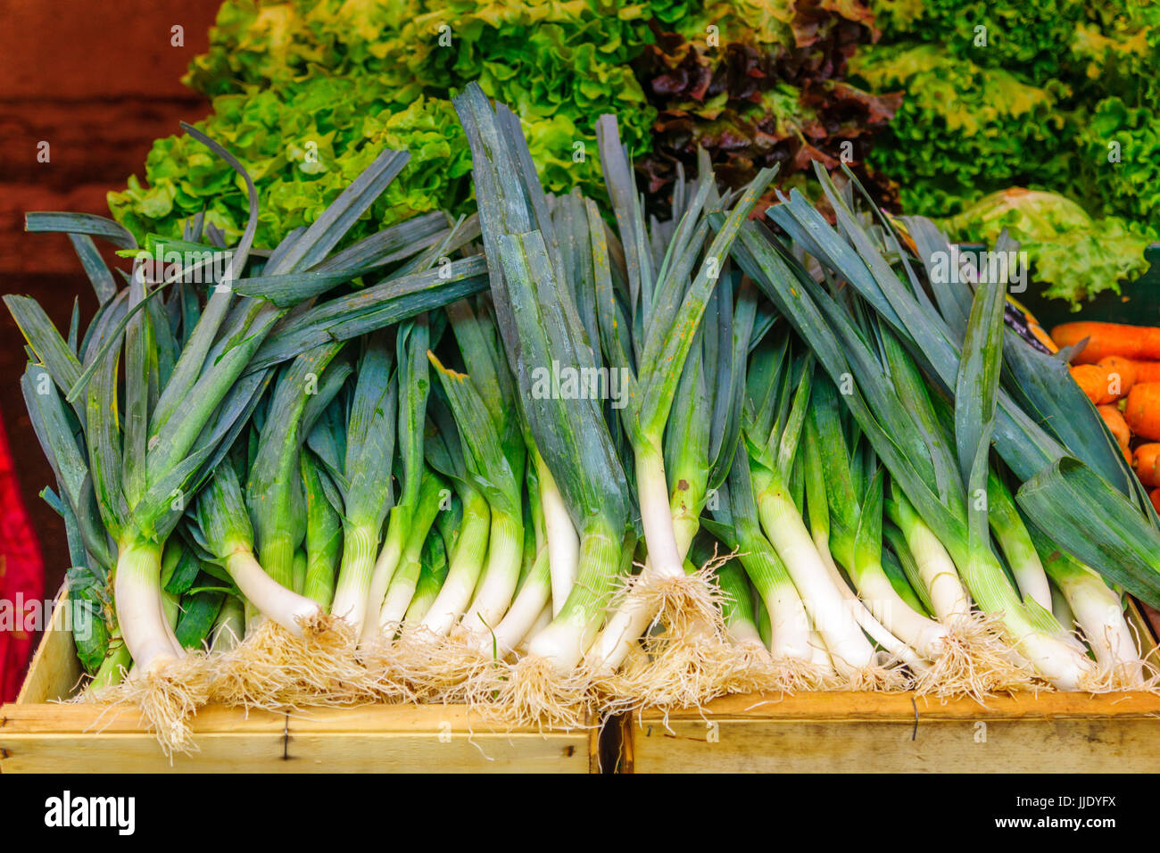 Leek on sale in a French market in Dijon, Burgundy, France - Stock Image