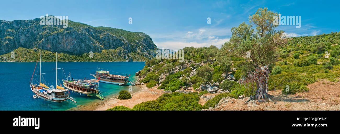 three tourist boats moored in blue lagoon at Camellia island in Aegean sea with old olive tree with colourful pieces Stock Photo