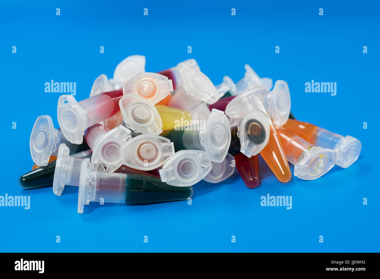 micro centrifuge test tubes with bio samples for microbial testing - Stock Image