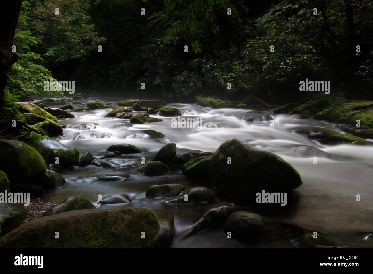river in Great Smokey National Park - Stock Image
