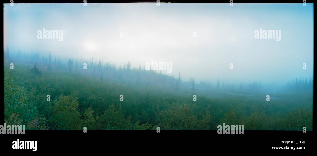 Panoramic film image of ominous morning fog and atmosphere resting along remote Alaskan wilderness. - Stock Image