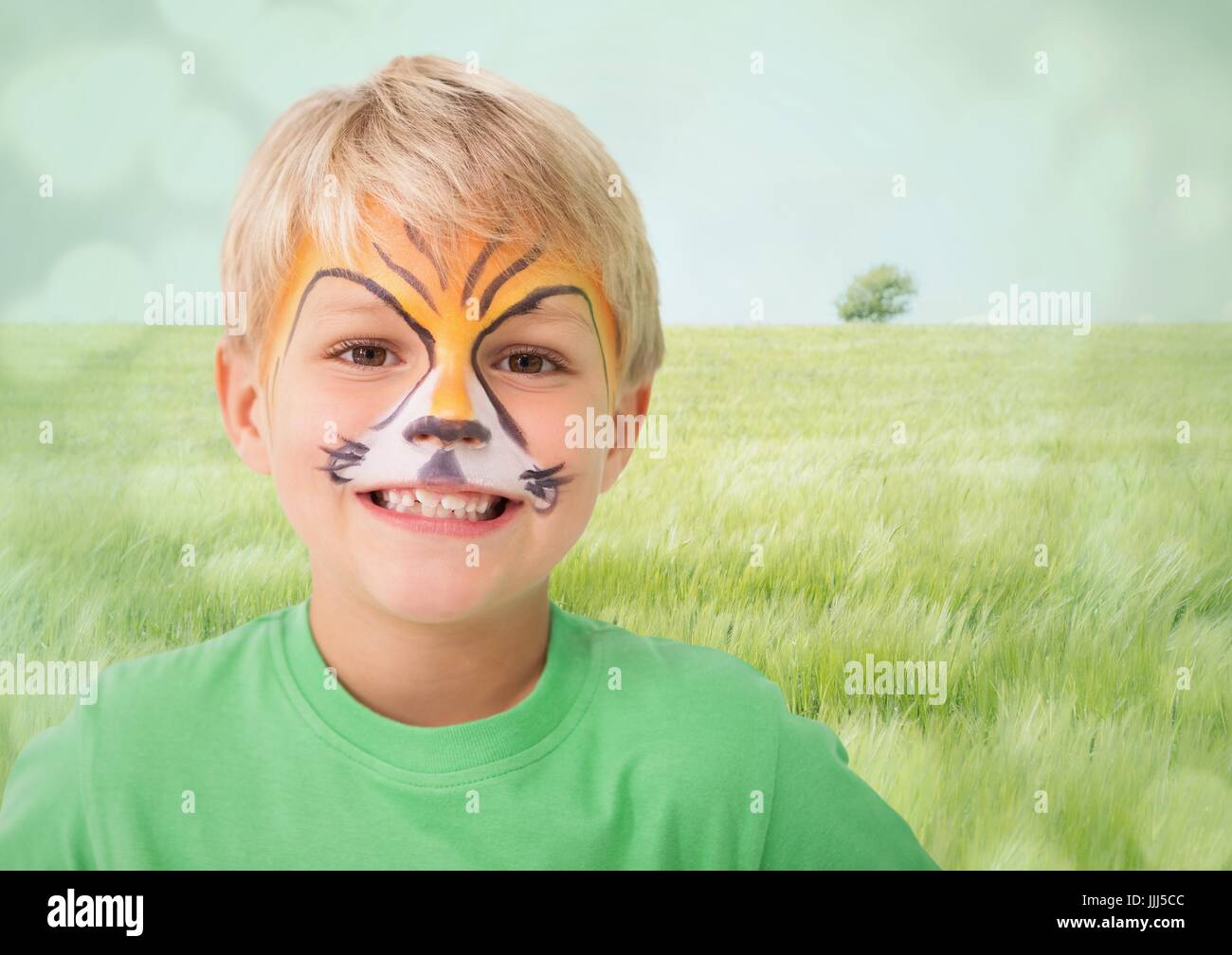 Boy with tiger facepaint against meadow with flare - Stock Image