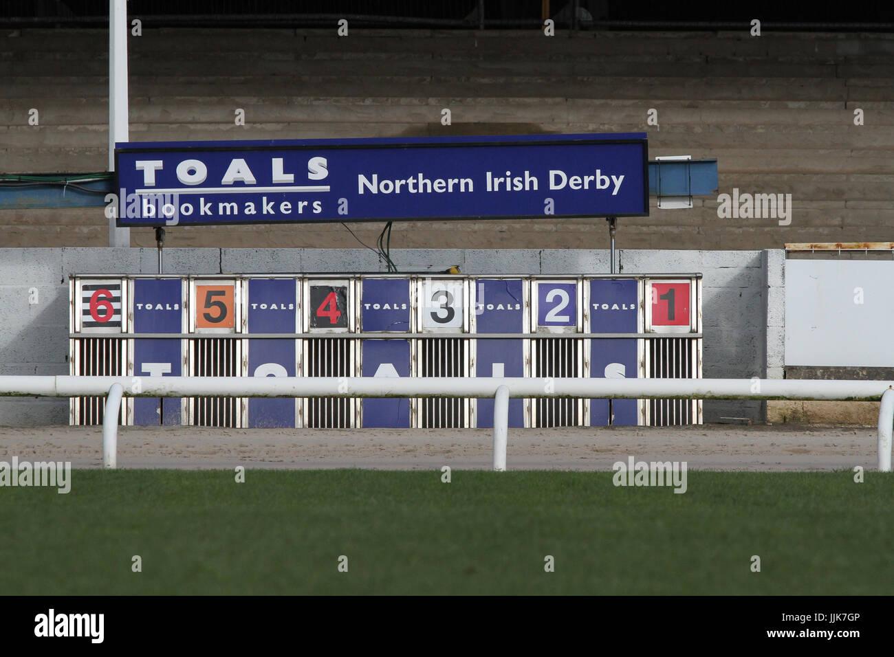 Greyhound trap at greyhound stadium. - Stock Image