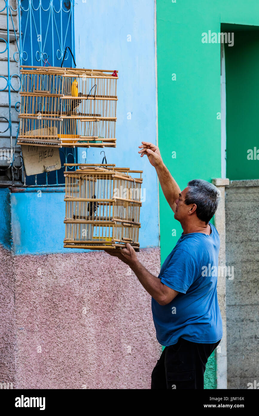 A CUBAN man hangs his bird cages on the outside of his house - TRINIDAD, CUBA - Stock Image