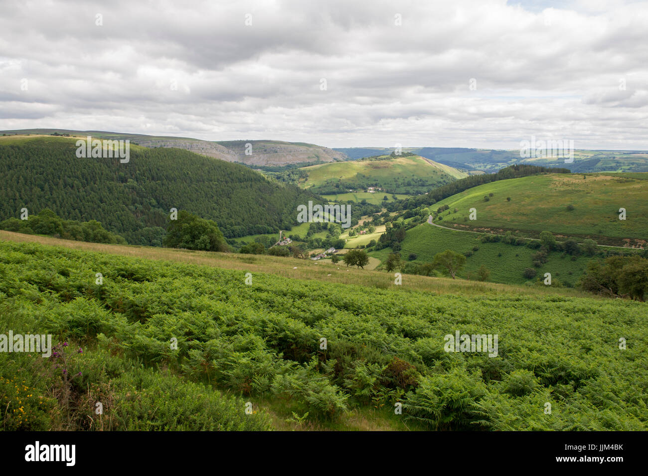 The view of the landscape from Horseshoe Pass on the A542 road near Llangollen in Wales Stock Photo
