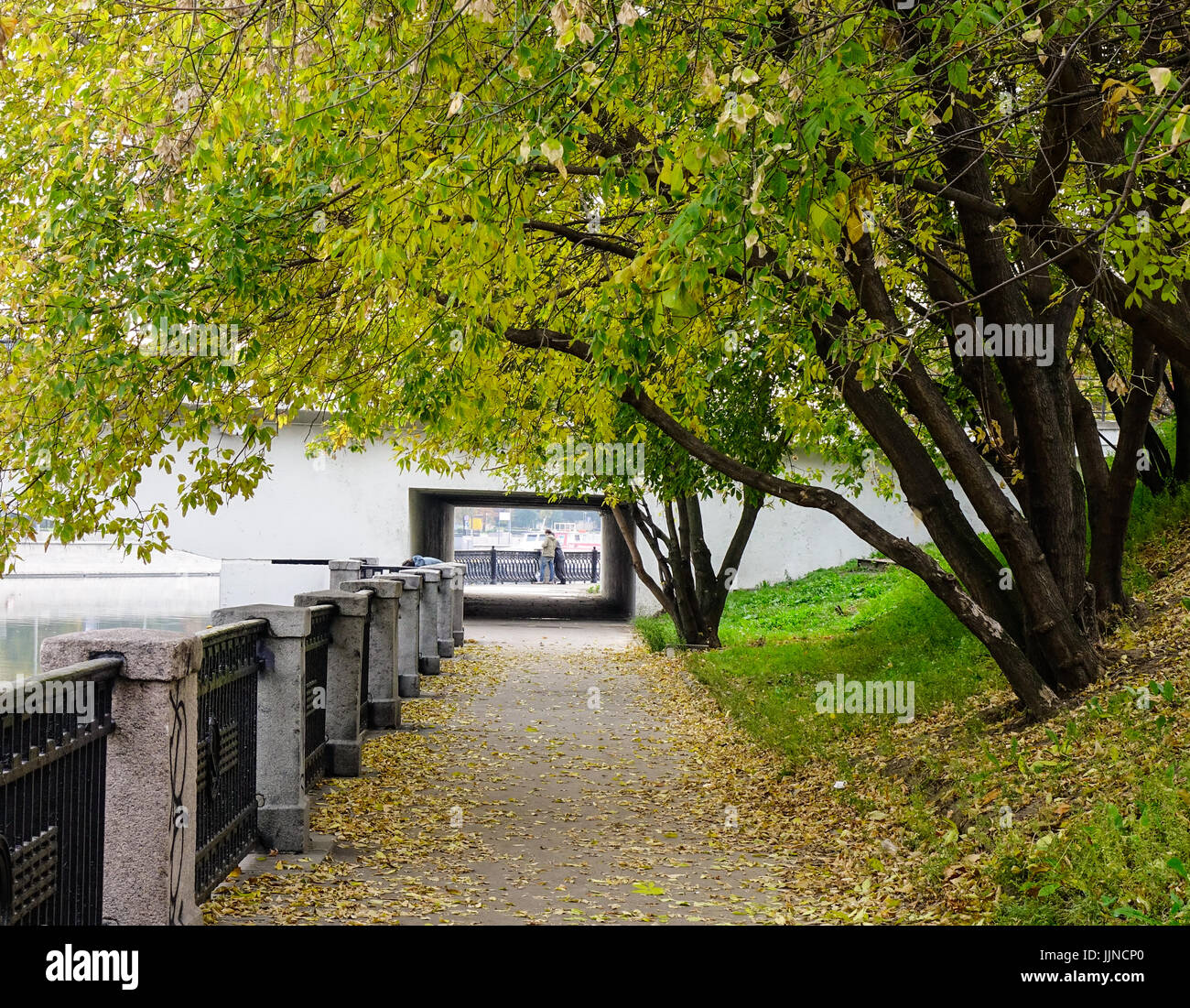 Public park at autumn in Moscow, Russia. Moscow is one of the greenest megacities in the world with more than fifty - Stock Image