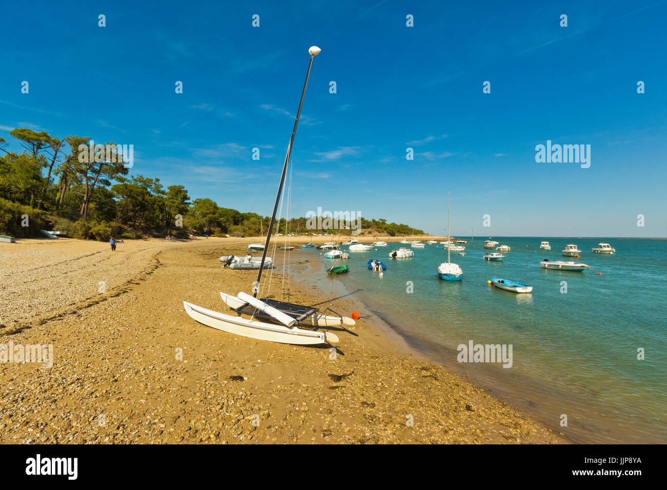 Boats moored in the entrance to Fier d'Ars by the beach at La Patache. Les Portes-en-Ré; Ile de Ré; - Stock Image