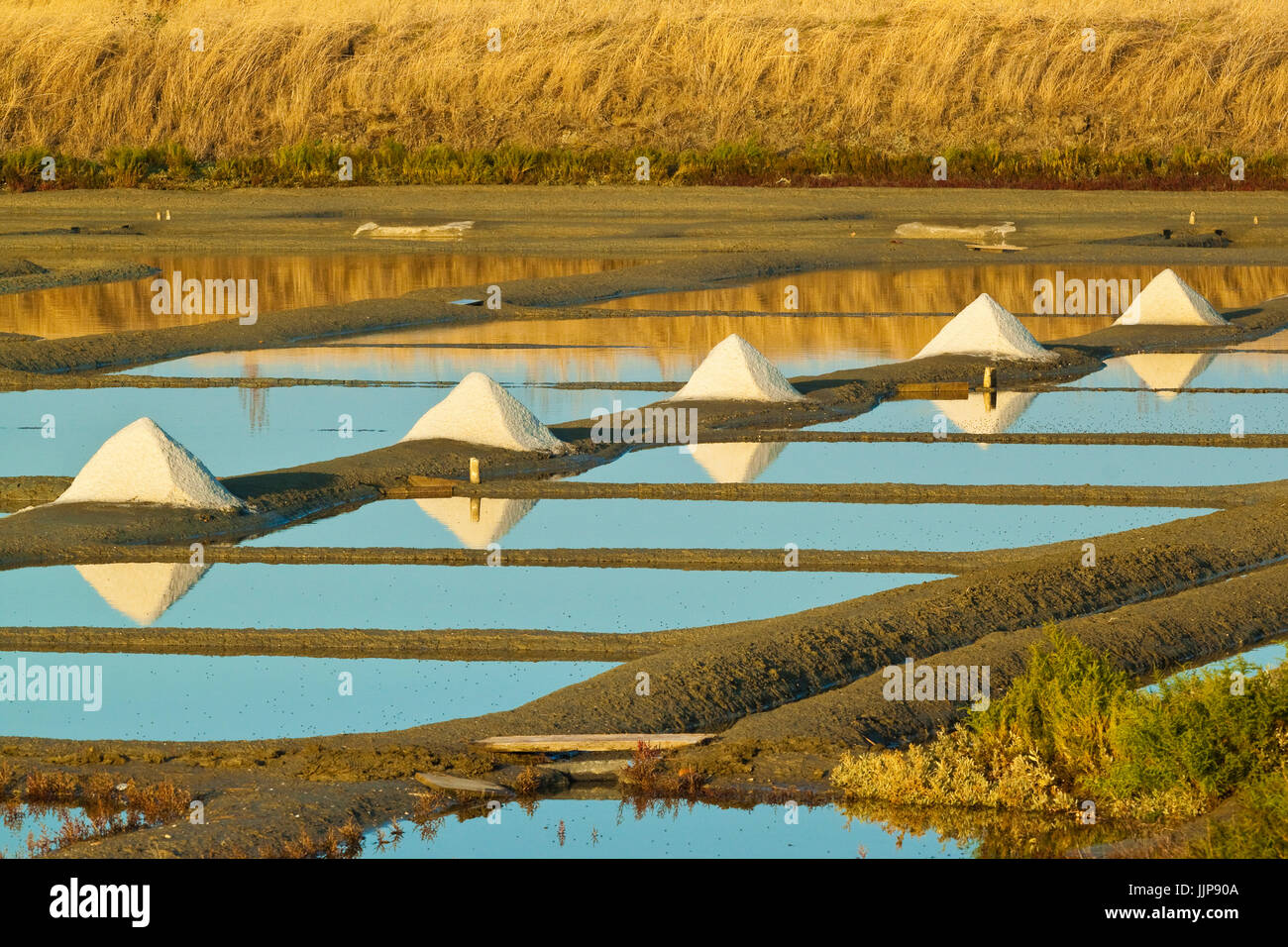Salt pans and piles of 'Fleur de Sel' around the Fier d'Ars marshes of the west. Ars en Ré; Ile - Stock Image
