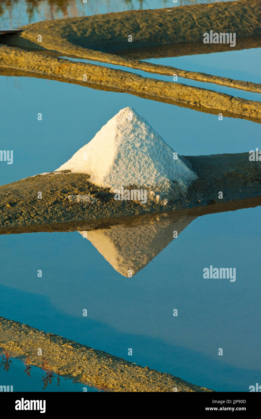 Salt pans and piles of 'Fleur de Sel' around the Fier d'Ars marshes of the west. Ars en Ré; Ile - Stock Image