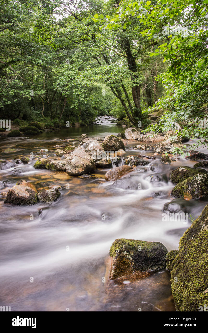 Twin rivers - Stock Image
