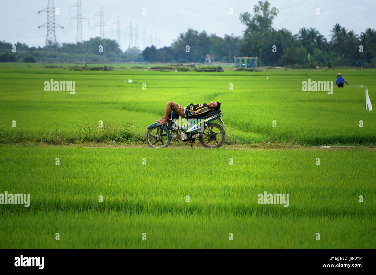 DAK LAK, VIET NAM, Asian man in deep sleep on motorbike at green paddy field when other working, he lie down on - Stock Image