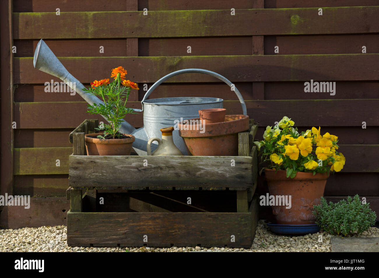 Flowers and pots in a cottage garden. - Stock Image