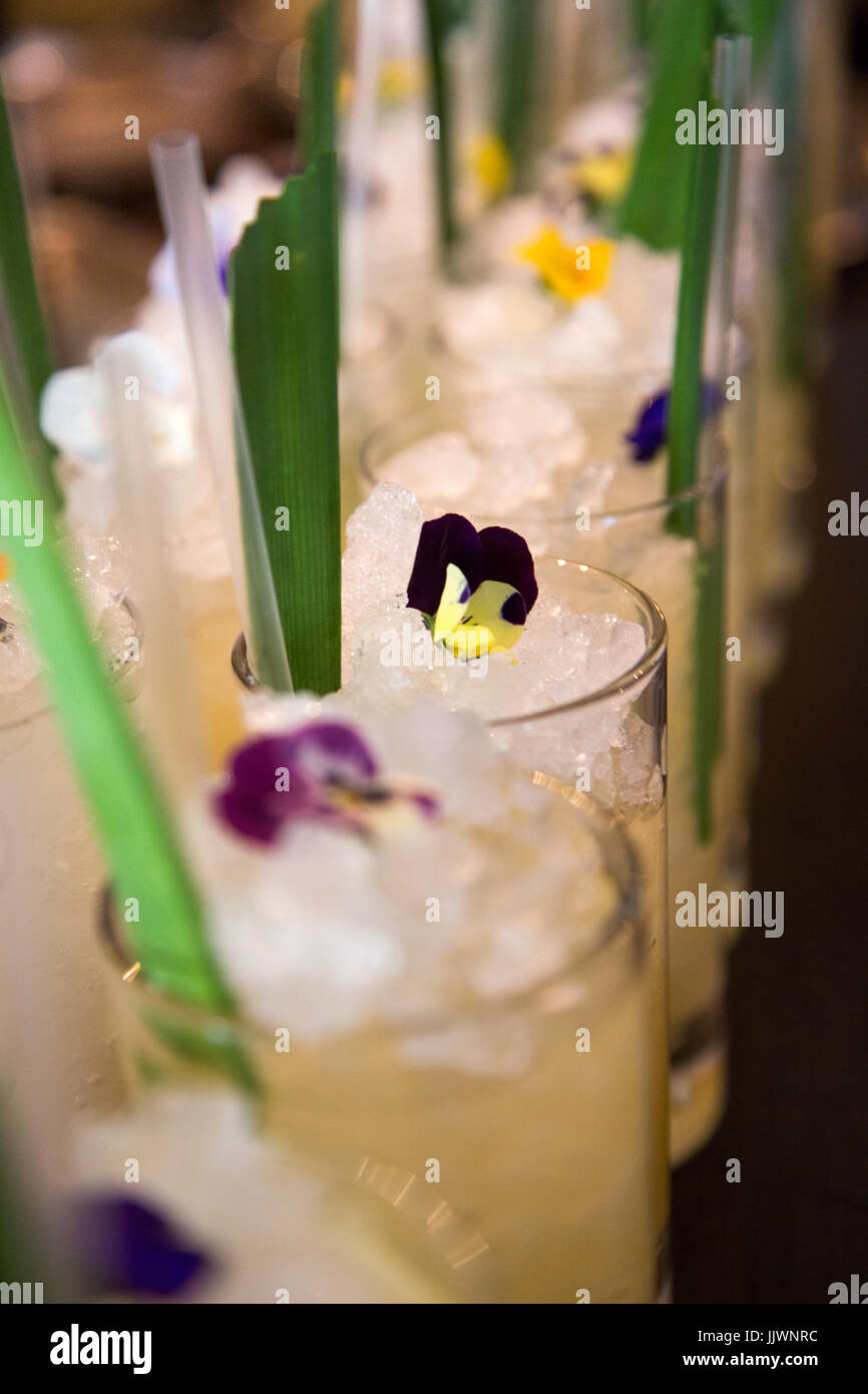 Cocktails lined up in a bar with pansy flowers on top. - Stock Image