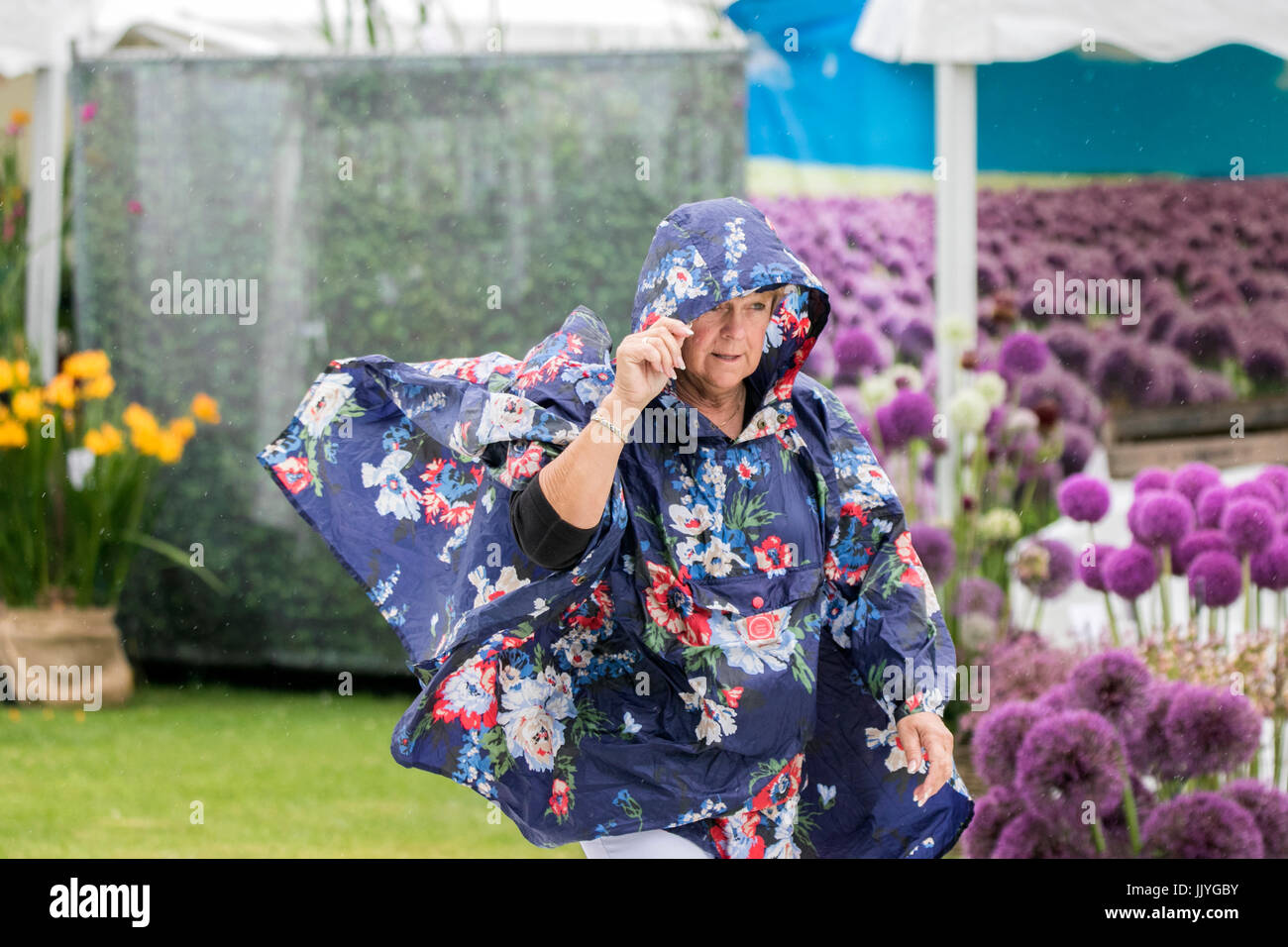 RHS Tatton Park Flower Show, Knutsford, Cheshire. UK WEATHER. 21st july 2017.  Strong winds and heavy showers water Stock Photo