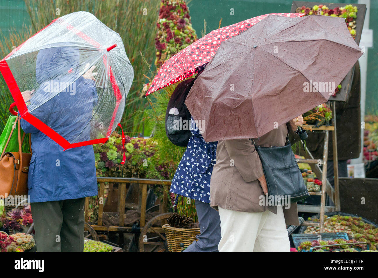 Knutsford Cheshire, UK.  21st July, 2017. UK Weather. Heavy rain, and prolonged showers expected, for Ladies Day - Stock Image