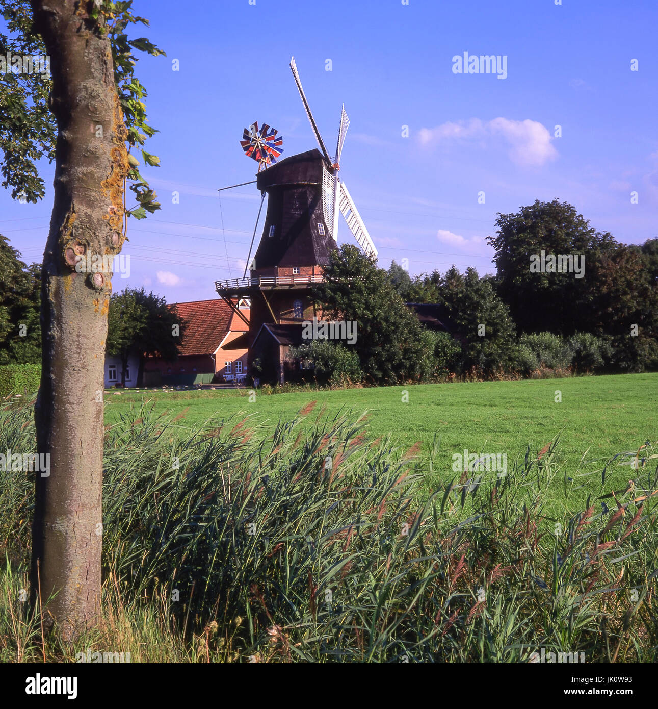 pointed and windmill in the summery one evening-bright. meadows and windmill in early evening light., wiesen und - Stock Image