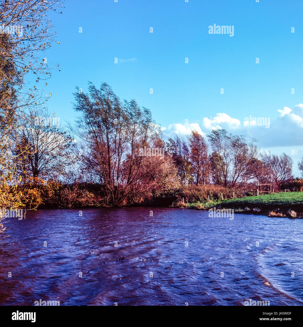 behind the dyke of situated ponds, a legacy of old storm floods, hinter dem deich gelegener weiher, eine hinterlassenschaft - Stock Image