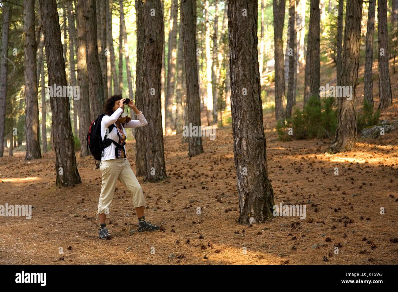 Woman in a forest. Cañon del  Rio Lobos  Natural Park .  Soria province, Castilla y Leon, Spain, Europe. - Stock Image