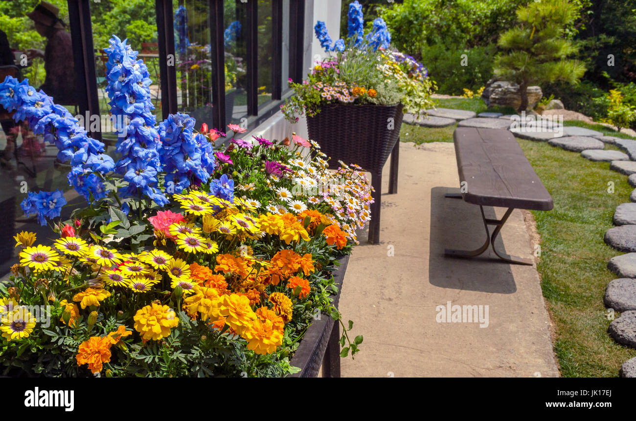 flowerbeds near building - Stock Image