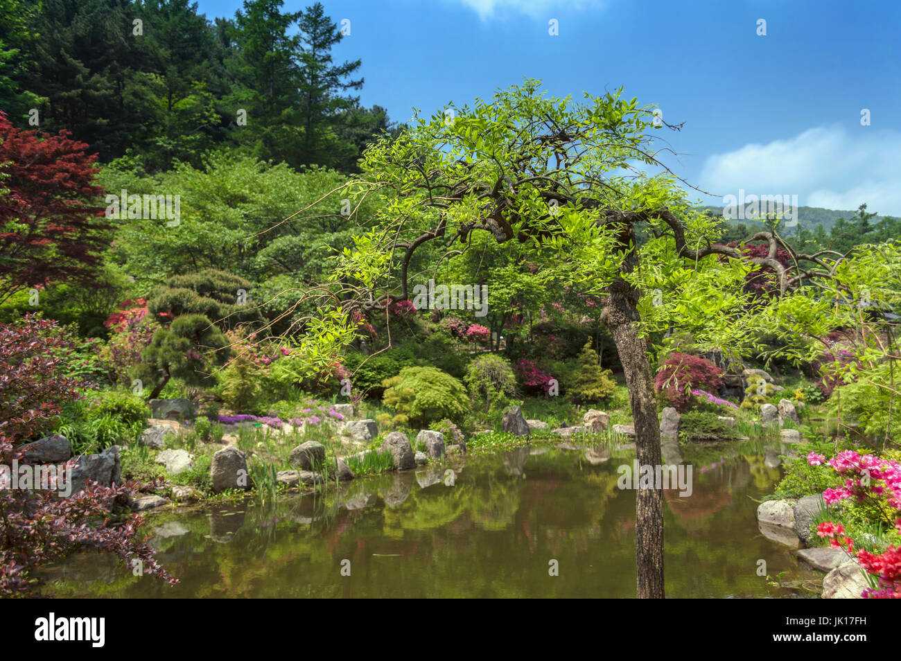 traditional korean garden with pond - Stock Image