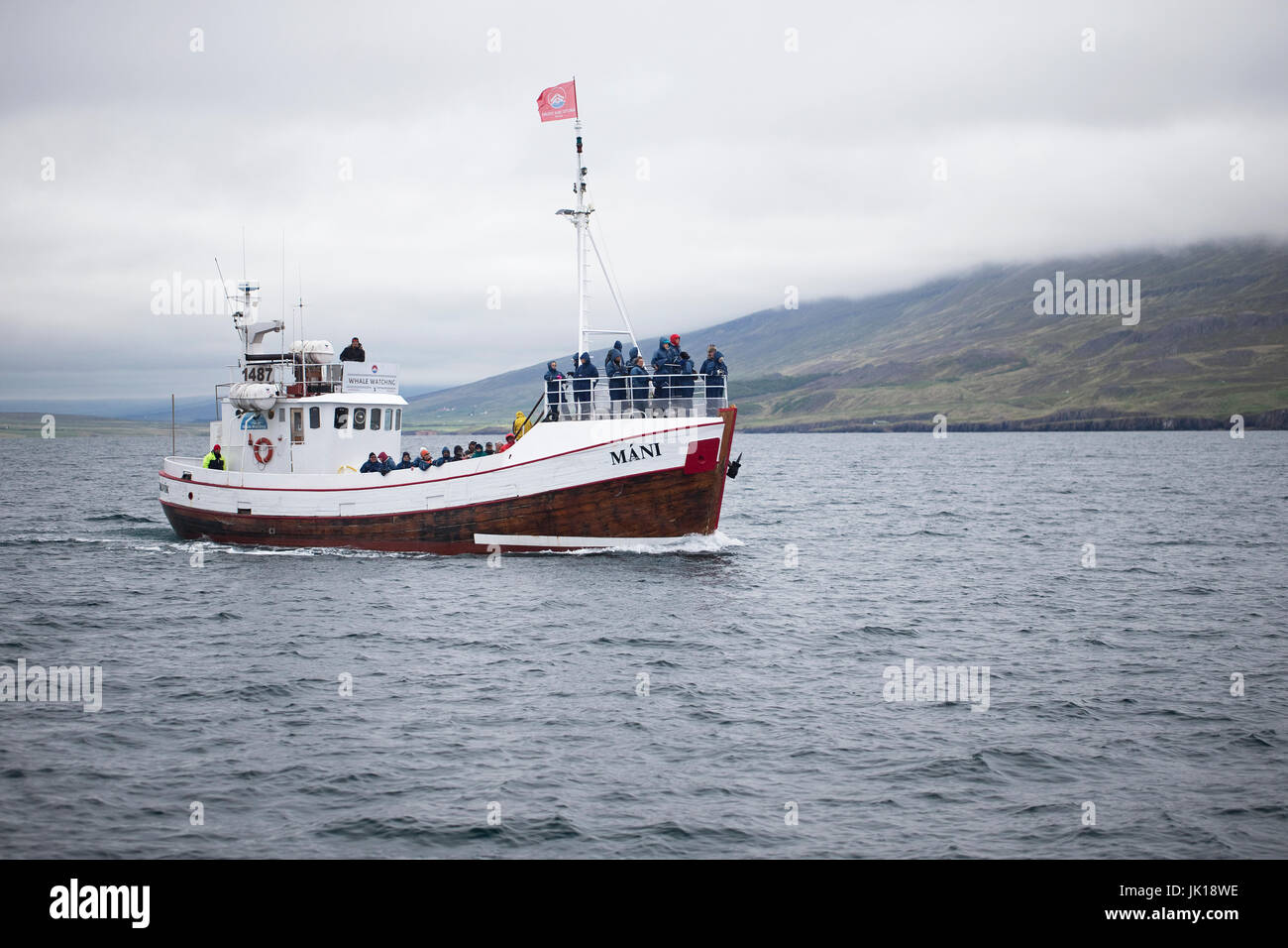 Humpback Whale (Megaptera novaeangliae) Iceland IS June 2017 - Stock Image