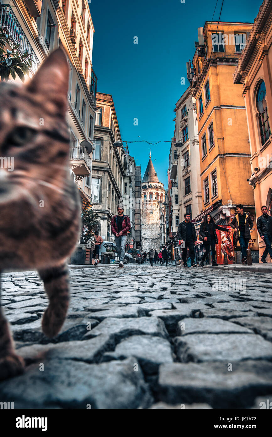 View of old narrow street with the Galata Tower(Turkish: Galata Kulesi)called Christ Tower by Genoese a famous medieval Stock Photo