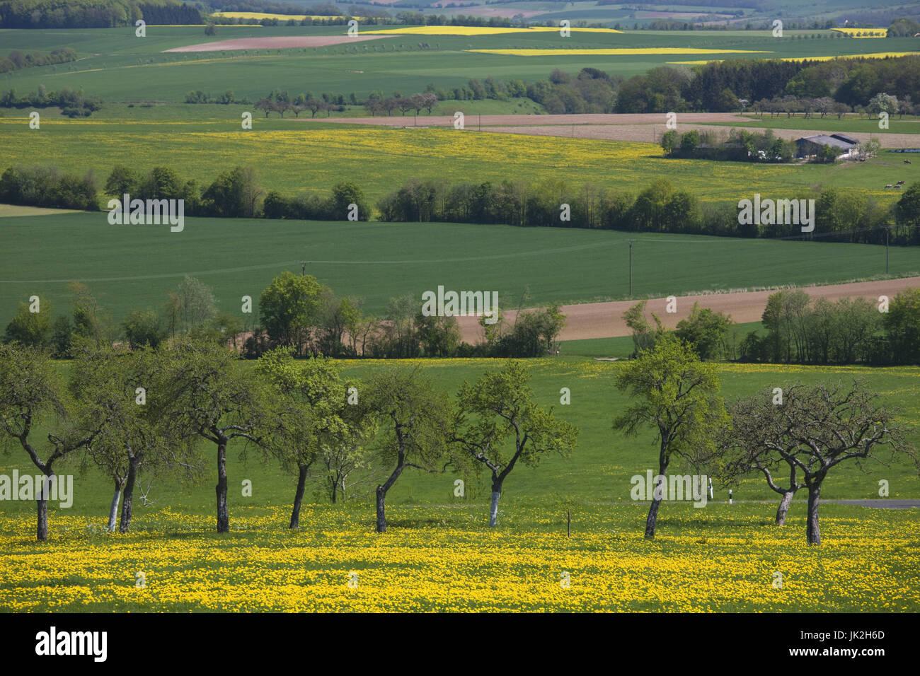 Germany, Rheinland-Pfalz, Mülbach, spring fields, - Stock Image