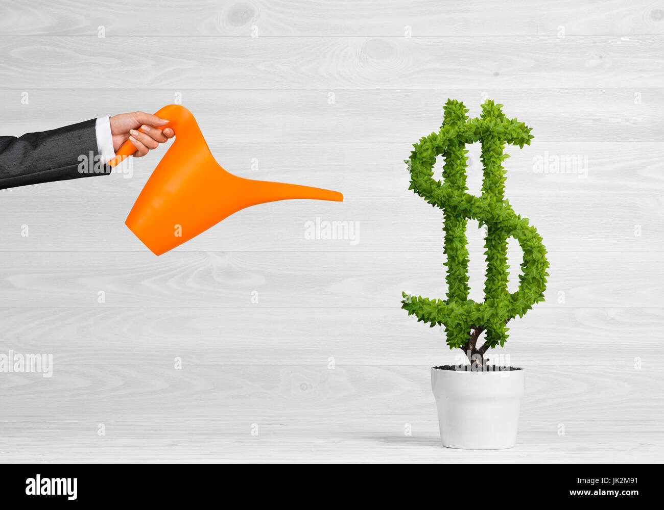 Concept of investment income and growth with money tree in pot - Stock Image