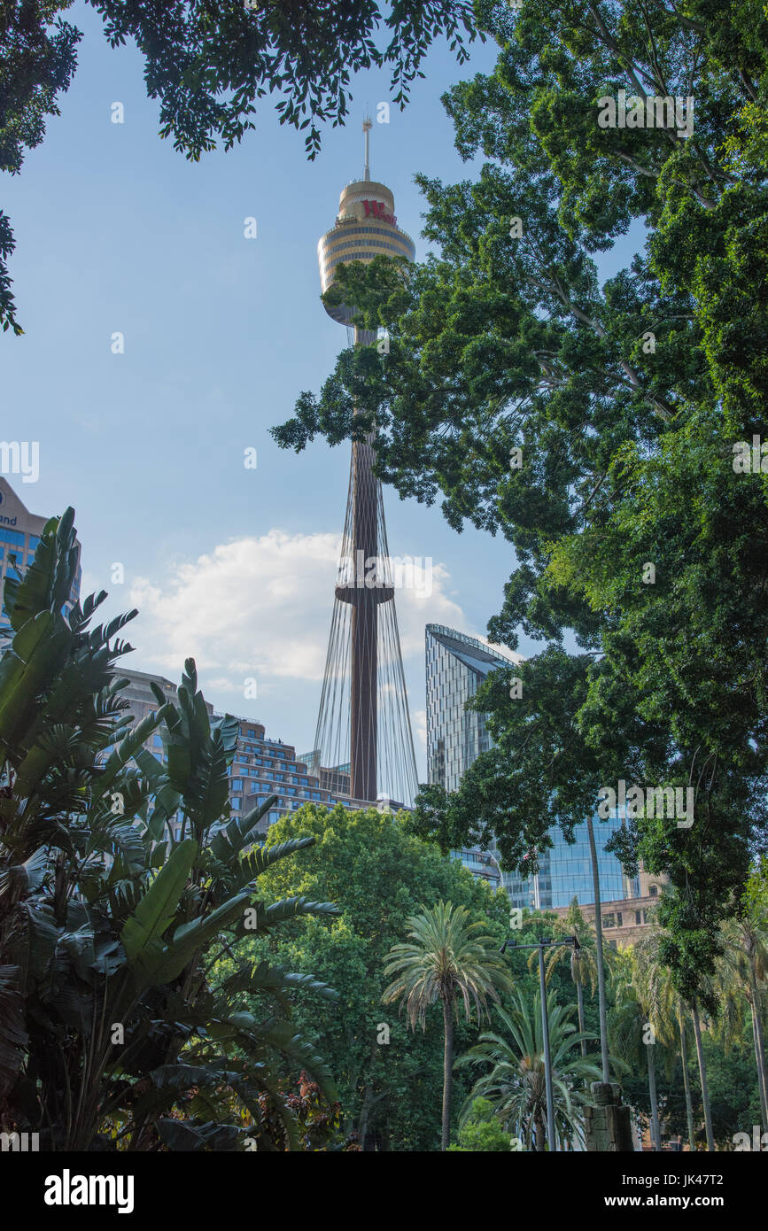 SYDNEY,NSW,AUSTRALIA-NOVEMBER 18,2016: Sydney Tower Eye view through the lush greenery at Hyde Park in downtown - Stock Image