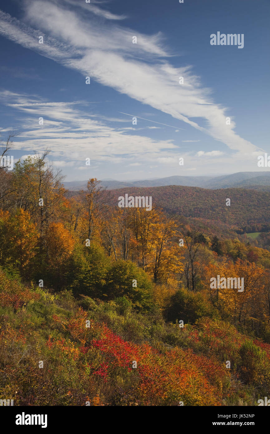 USA, West Virginia, Cheat Bridge, Monongahela National Forest, fall foliage, Rt.250 - Stock Image