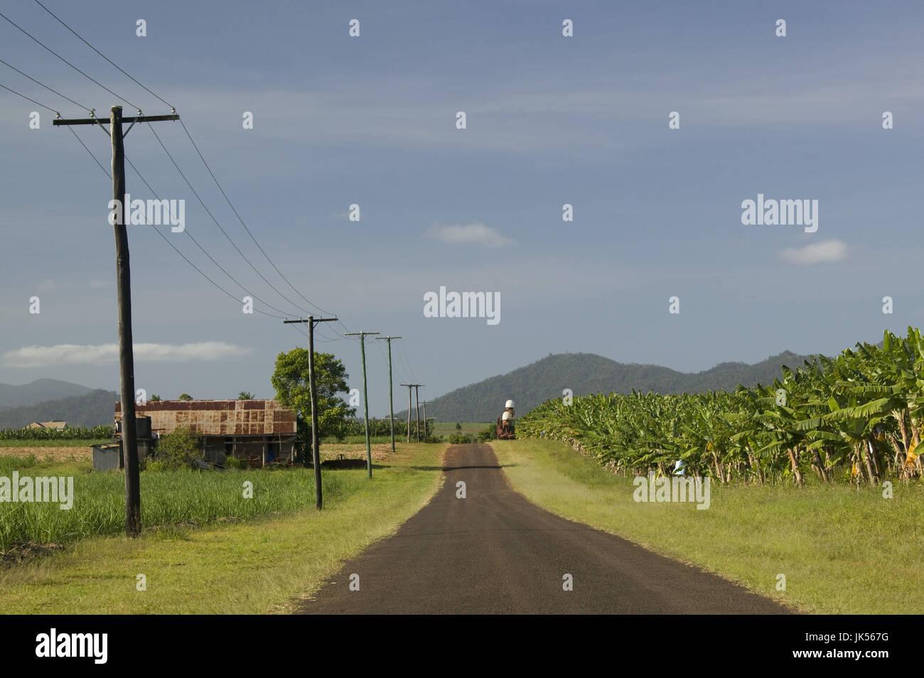 Australia, Queensland, North Coast, Babinda, Banana Road, Stock Photo