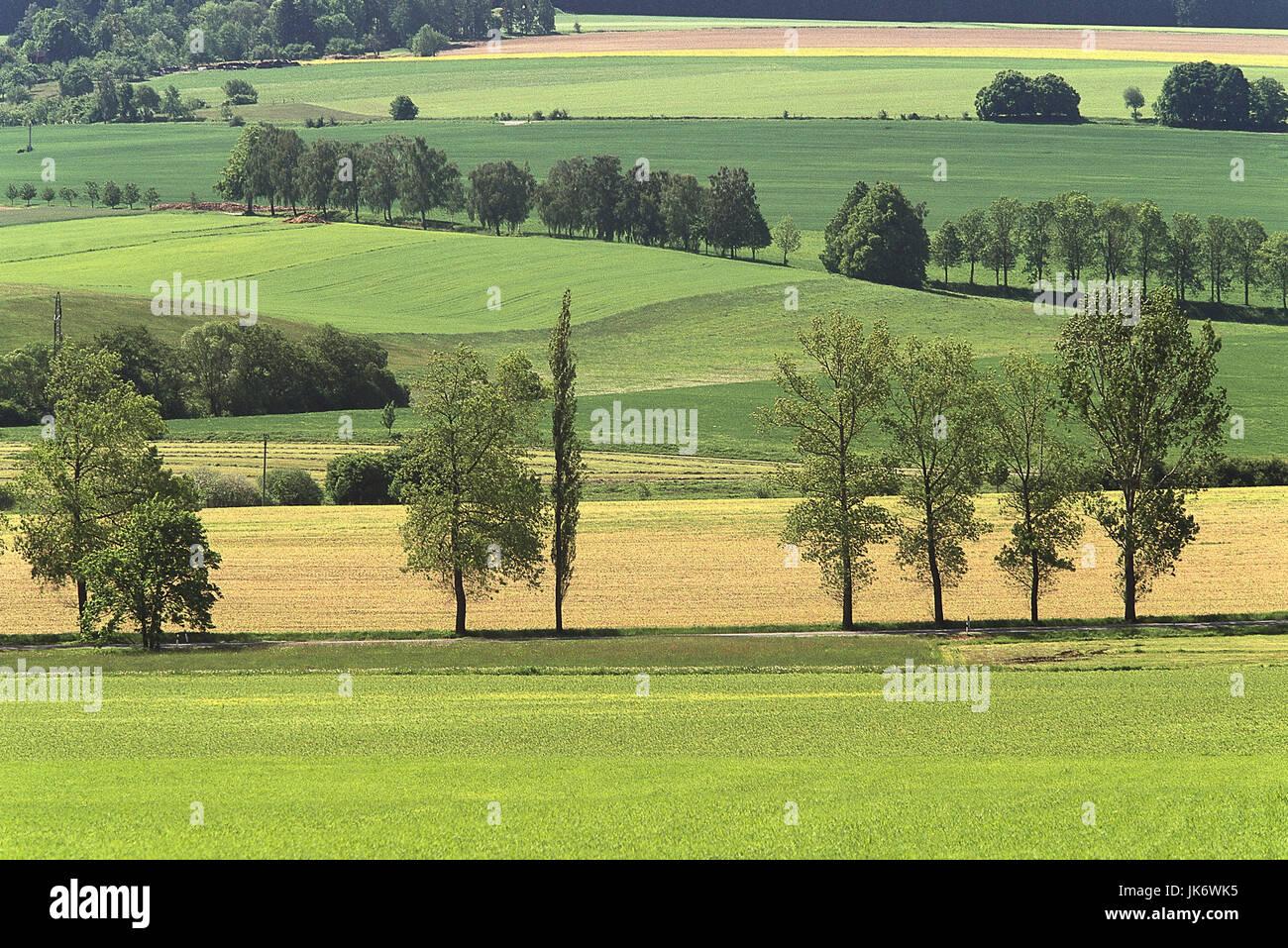Tschechische Republik, Südböhmen,  Kamen, Feldlandschaft, Bäume  Europa, Osteuropa, Tschechien, Ceská - Stock Image