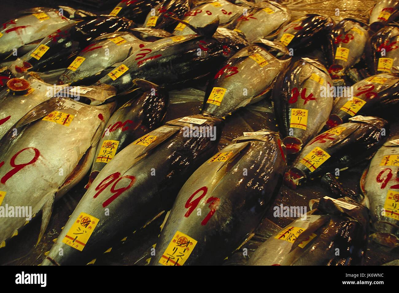 Japan, Tokio, Tsujiki, Fischmarkt, Thunfisch, frisch  Wirtschaft, Markt, Fische, Verkauf, verkaufen, Tokyo-to, Honshu - Stock Image