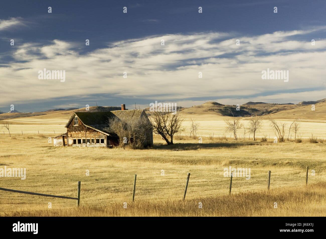 Kanada, Alberta, Cowley, Ranch   Mau_Set, Nordamerika, westliche Prärieprovinz, Holzhaus, alt, Weiden, Felder, - Stock Image