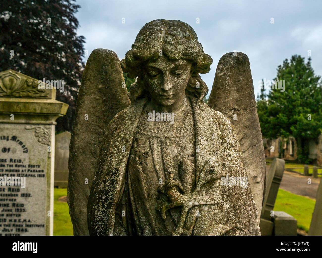 Close up of gravestone stone angel with bowed head and wings in churchyard, St Mary's Collegiate Church, Haddington, - Stock Image