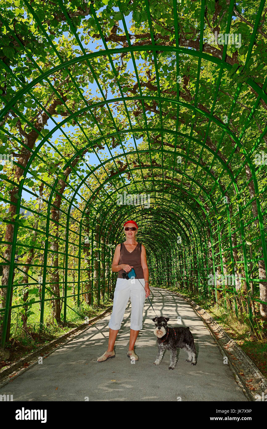 Woman with Miniature Schnauzer, black-silver under pergola in park, Germany - Stock Image
