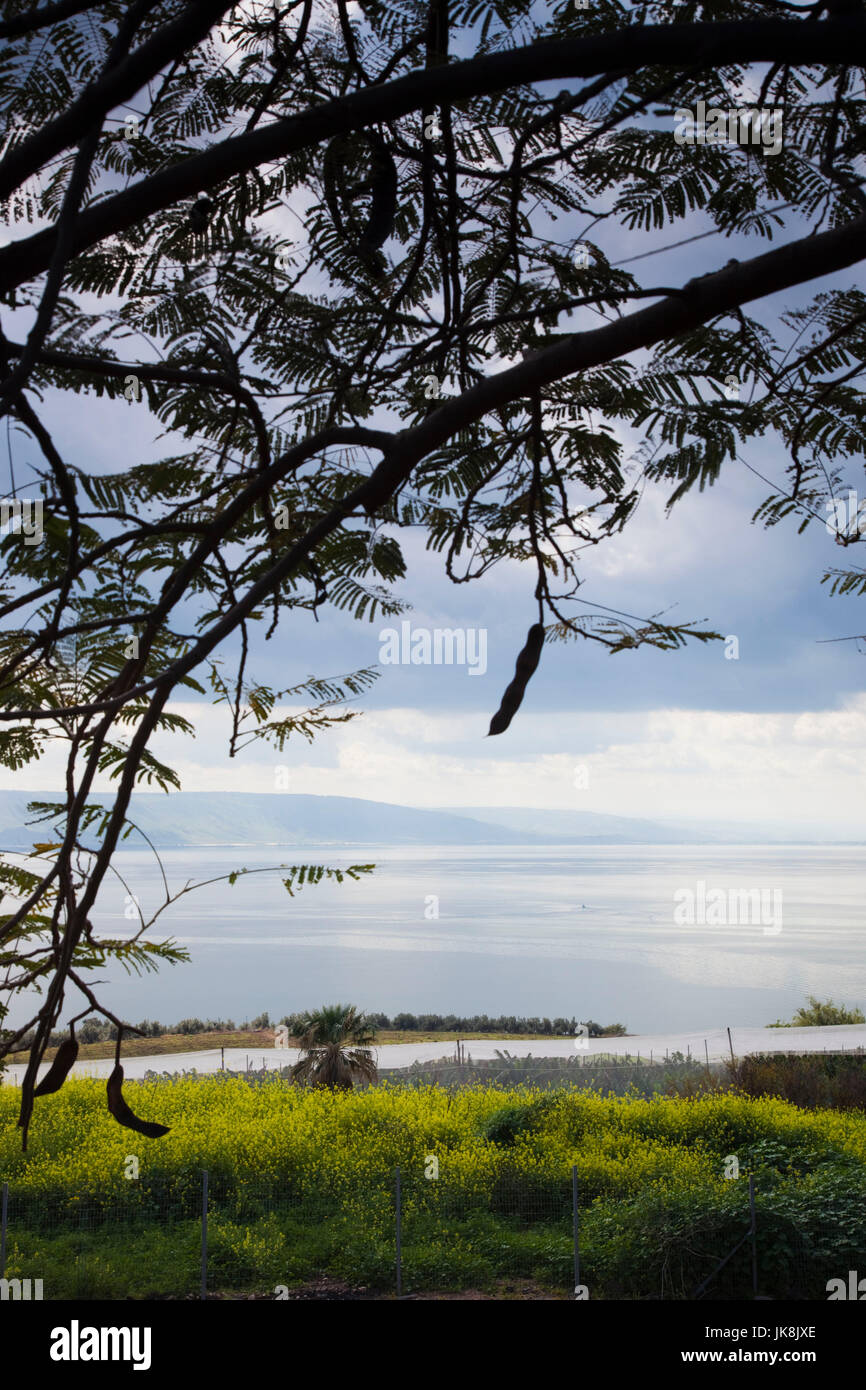 Israel, The Galilee, Tabgha, Mount of the Beatitudes, view of Sea of Galilee-Lake Tiberias Stock Photo