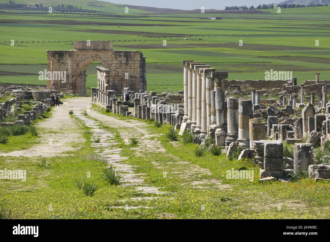 Marokko, Volubilis, Ruinen, Säulen,  Triumphbogen,   Reiseziel, Sehenswürdigkeit, Kultur, Ruinenfeld, - Stock Image