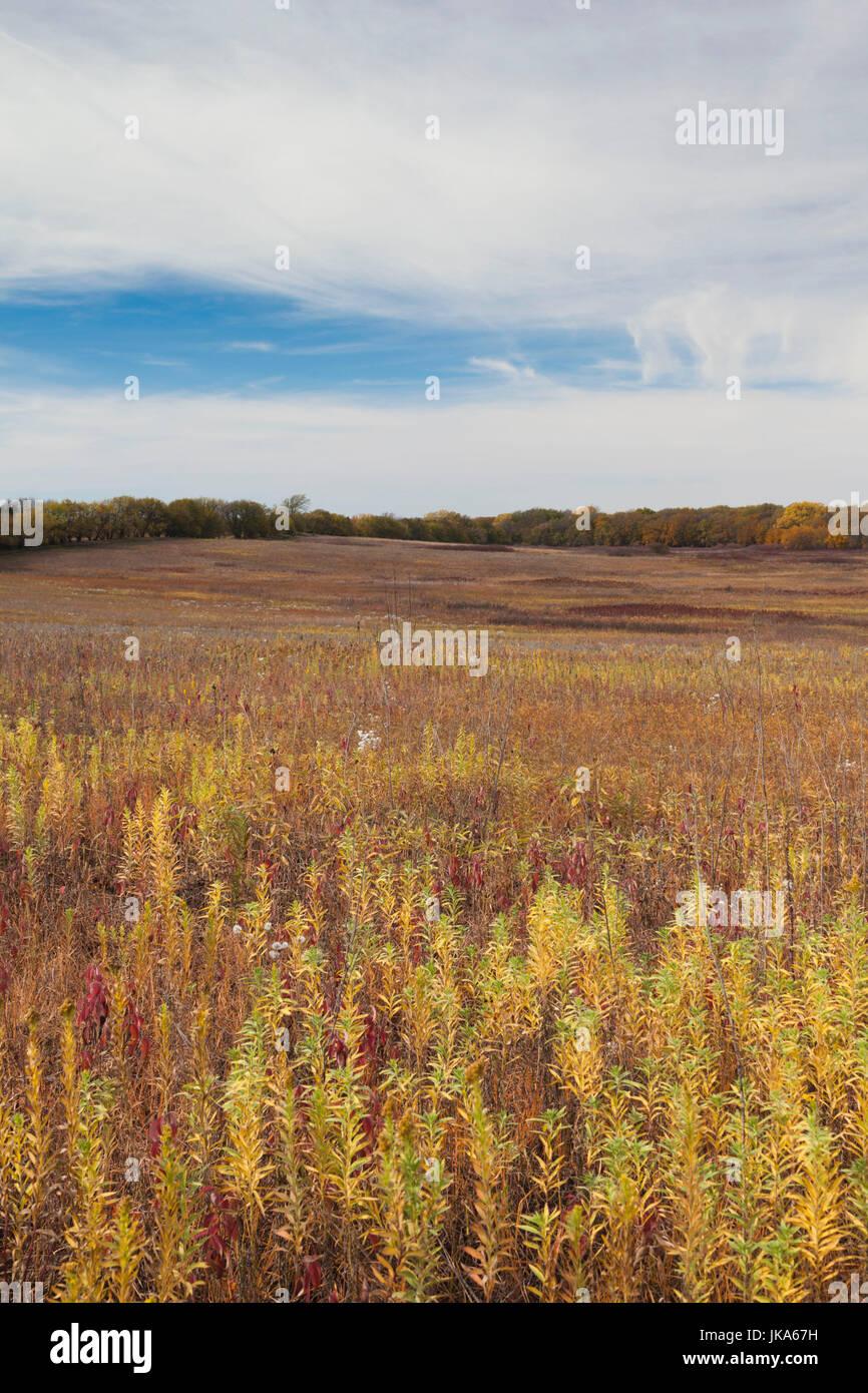 USA, Nebraska, Beatrice, Homestead National Monument of America, prairie grassland - Stock Image