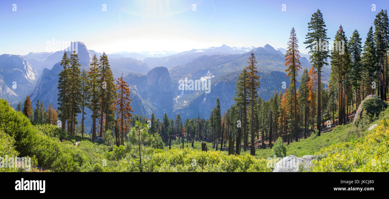 Green shrubs, trees and blue and purple mountians - Stock Image