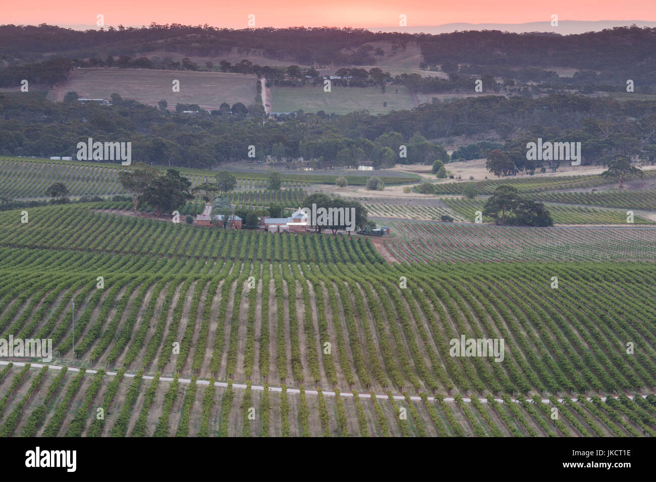 Australia, South Australia, Clare Valley, Clare, elevated view of vineyards from Quarry Hill, late afternoon - Stock Image