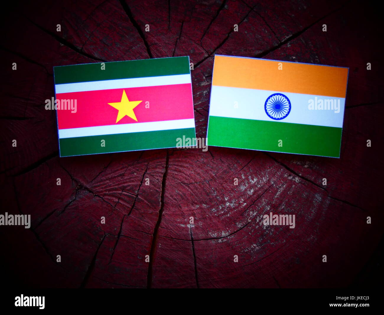 Suriname flag with Indian flag on a tree stump isolated - Stock Image
