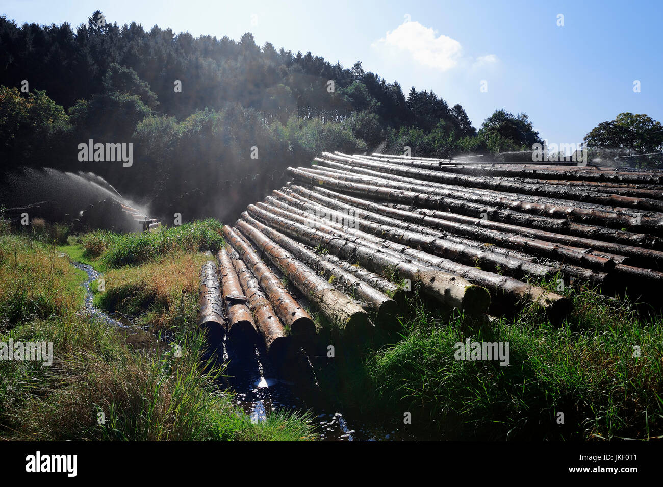 Irrigation of piles of wood, Sauerland, North Rhine-Westphalia, Germany / timberyard | Nassholzlager, Bewaesserung Stock Photo