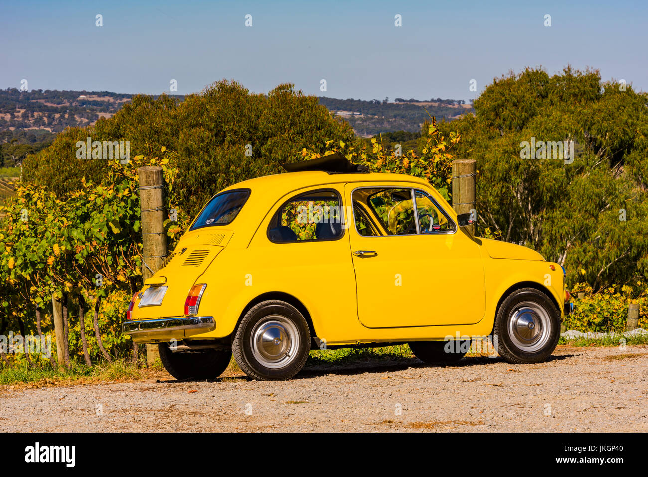 Yellow car parked up in front of a row of grapevines in the Adelaide Hills in South Australia - Stock Image