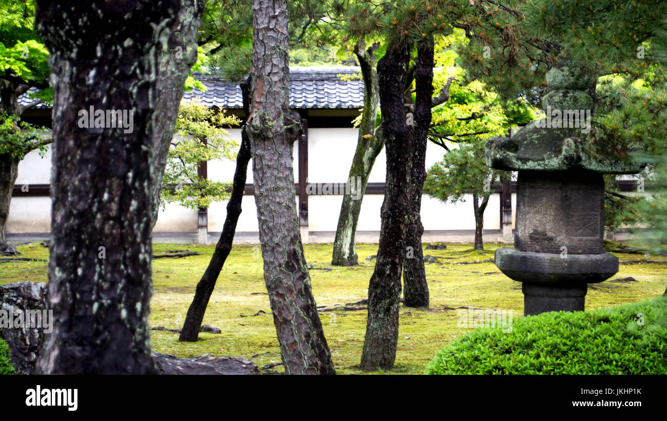 Stone Lantern with Trees in Kyoto, Japan - Stock Image