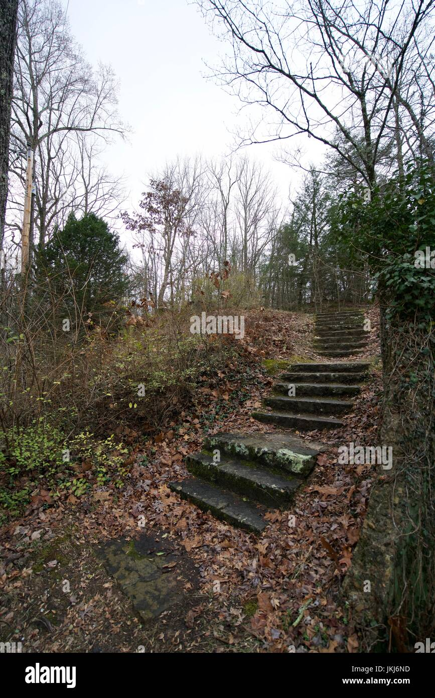 Old lichen and moss covered stone stairs leading nowhere in a beautiful Tennessee wooded setting. - Stock Image