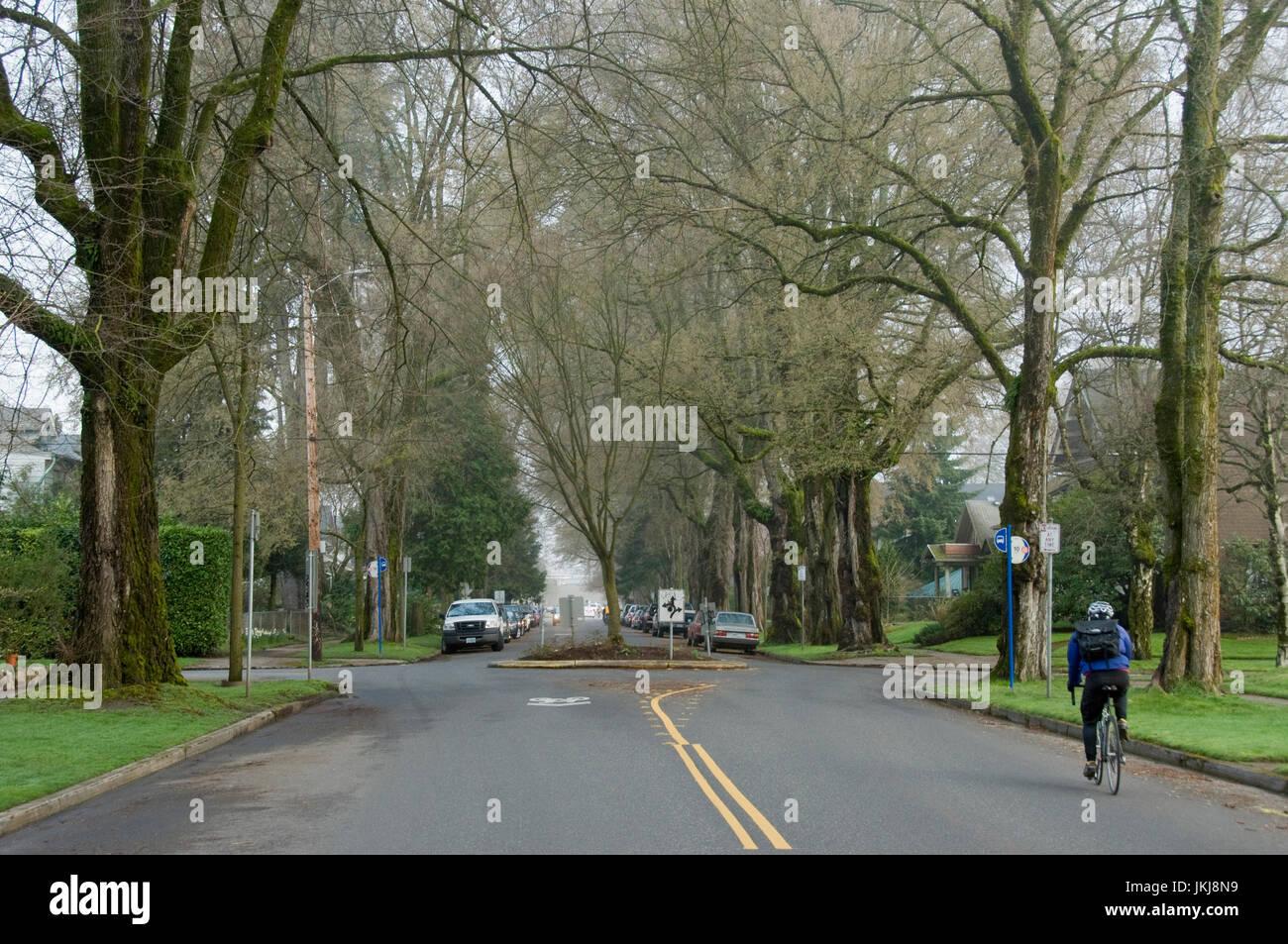 A bicyclist riding throug the Ladds Edition neighborhood of Portland, Oregon. - Stock Image