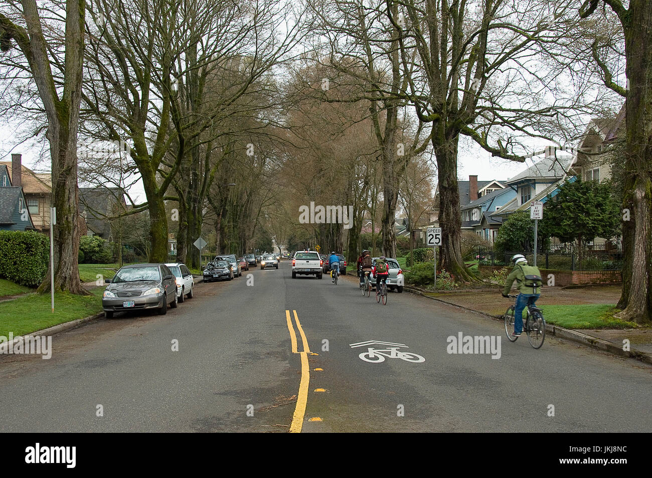 A line of bicyclists sharing the road with automobiles in the Ladds Edition neighborhood of Portland, Oregon. - Stock Image